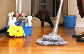 شركة تنظيف المنازل بالمدينة المنورة
