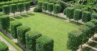 تنسيق حدائق وإنشاء ملاعب بالدمام